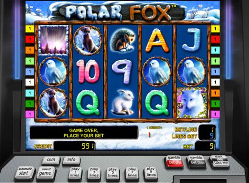 Polar Fox Παίξτε την υποδοχή σε απευθείας σύνδεση